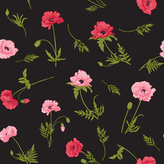 Seamless pattern with pink and red poppy flowers in botanical style on black background. Stock line vector illustration.