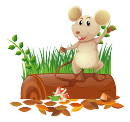 Little mouse on the log