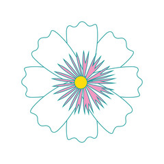 Beautiful ornamental flowers icon vector illustration graphic design