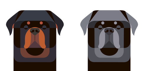 Colored and gray Rottweiler portrait in geometric style