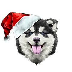 dog breed Alaskan Malamute puppy with his tongue hanging out, head in a Santa hat on the side symmetry looks right sketch vector graphics color picture