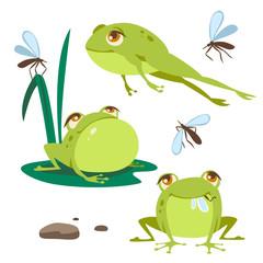 vector frog cartoon style set