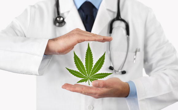 doctor hands with marijuana symbol medical concept