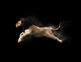A male lion moving and jumping with dust particle effect on black background, 3d illustration