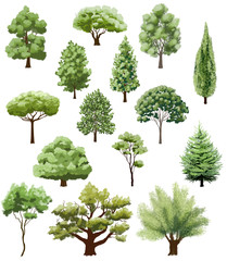 various types of trees on white. hand drawn illustration