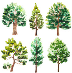 set of watercolor trees on white