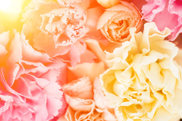 close-up floral composition Floral background with copy space
