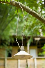 Lampe im Jungle
