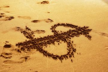 dollar sign drawing on sandy beach