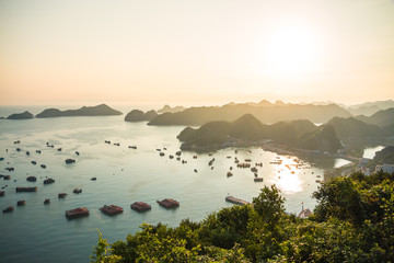 Boats in Halong Bay, located in vietnam