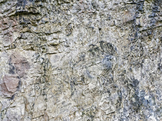 Close up of a worn, weathered section of a limestone rock formation.