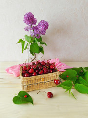 Summer composition composed of cherries in a basket and a blooming branch of lilac