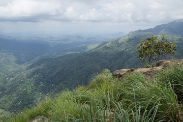 View from Ella Rock, Ella, Sri Lanka