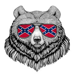 Grizzly bear Big wild bear wearing glasses with National flag of the Confederate States of America Usa flag glasses Wild animal for t-shirt, poster, badge, banner, emblem, logo