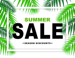 Summer sale season discounts banner with paper frame and palm  leaves. Shop market poster design. Vector illustration.