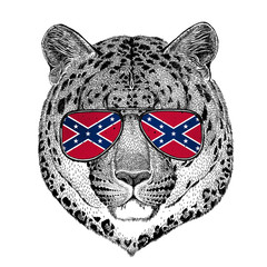 Wild cat Leopard Cat-o'-mountain Panther wearing glasses with National flag of the Confederate States of America Usa flag glasses Wild animal for t-shirt, poster, badge, banner, emblem, logo
