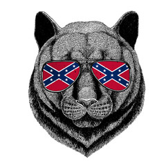 Panther Puma Cougar Wild cat wearing glasses with National flag of the Confederate States of America Usa flag glasses Wild animal for t-shirt, poster, badge, banner, emblem, logo