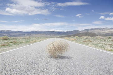 Empty road with tumbleweed