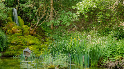 beautiful pond with waterfall and greenery.