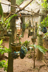 Pflanzen im Naturvolkdorf