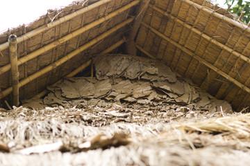 Natürliche Hintergrundstruktur Blätter Holz