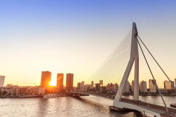 Tuinposter Rotterdam Rotterdam