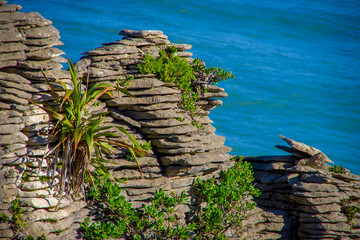 Beautiful view of pancake rocks in Punakaiki, South island, in New Zealand