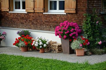 Blumen an einem Haus