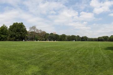 Central Park Baseball
