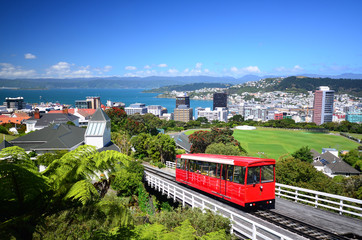 Wellington City Wall mural