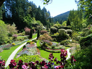 Staande foto Tuin Immaculately manicured garden landscape