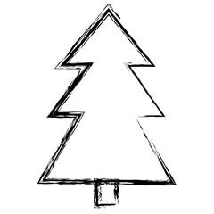 pine tree plant isolated icon vector illustration design