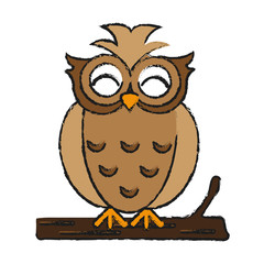 happy cute  owl icon image vector illustration design  sketch style