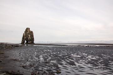 Hvitserkur, black sand, basalt stack, Iceland