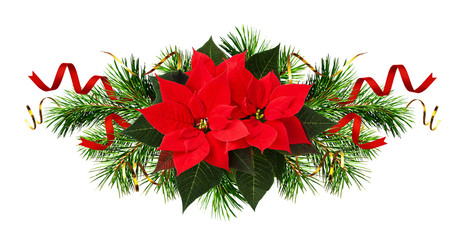 Red poinsettia flowers and Christmas decorations