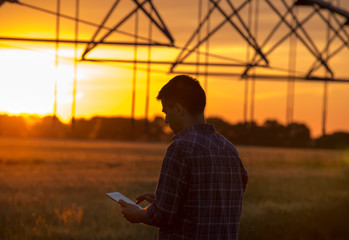 Farmer with tablet in field at sunset