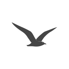 Seagull icon - vector illustration