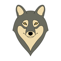 Isolated head of grey wolf on white background. Colored cartoon portrait.