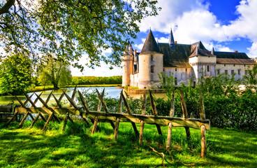 Romantic medieval castles of Loire valley - beautiful Le Plessis Bourre. France