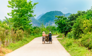 View on Chinese Farmer by Yangshuo in China