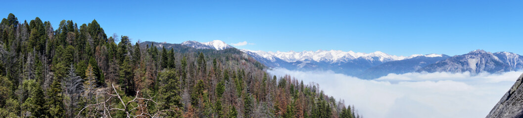 Panoramic view over the mountain landscape and over the clouds - Moro Rock, Sequoia National Park, California, USA