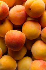 Apricots - Close Up