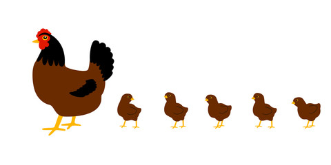 Hen with chickens. White background. Isolated. Vector