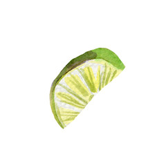 fresh lime illustration. Hand drawn watercolor on white background.