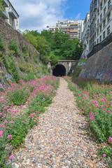 Paris, abandoned railways in Petite Ceinture