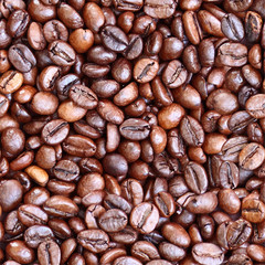 Seamless coffee beans background. Vector EPS 10 illustration.
