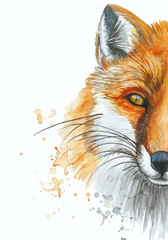 Painted with a watercolor drawing of a red fox, the head of a fox, for printshop, interesting decor, a bright animal picture