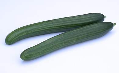 Ripe cucumber long isolated on white background.