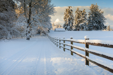 Beautiful Country Drive After a Snowstorm. Fresh powdery snow carpets the landscape after a recent snowstorm on an island in the Puget Sound area of the Pacific Northwest.
