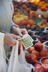 Paying for Fruit at Farmers Market